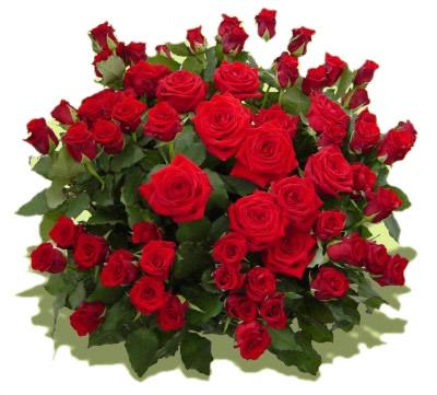 rote rosen blumenstr u e haedi flor meisterbetrieb onlineshop. Black Bedroom Furniture Sets. Home Design Ideas