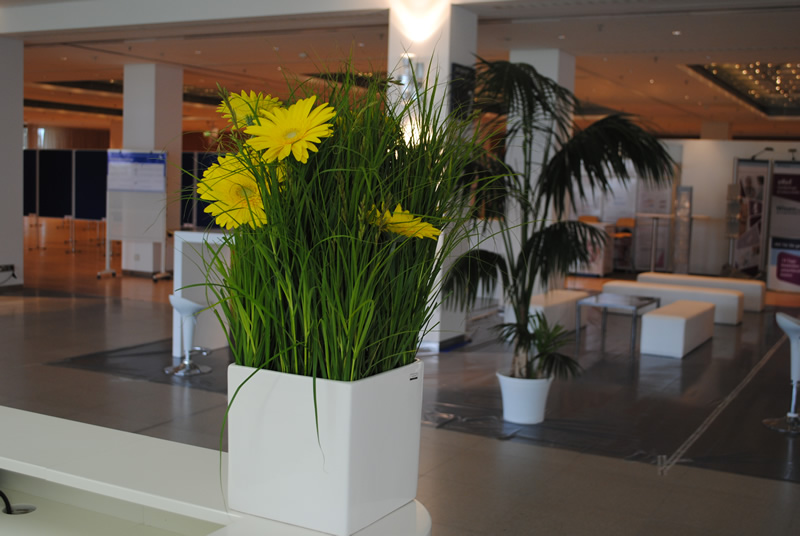Dekoration raumgestaltung hydrokulturen zimmerbrunnen for Raumgestaltung planer